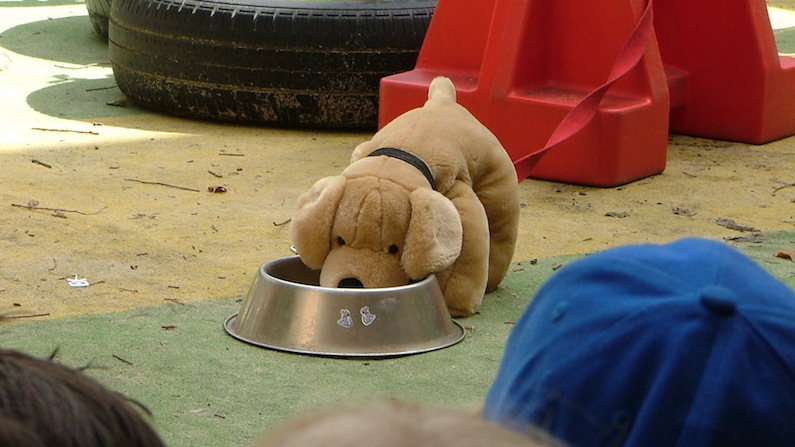 Children shouldn't pat a dog who's eating